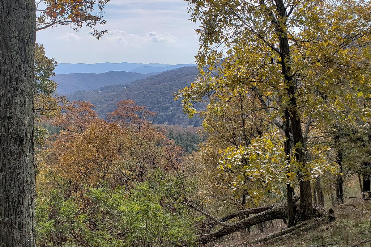 Mountain view near PA-WV line